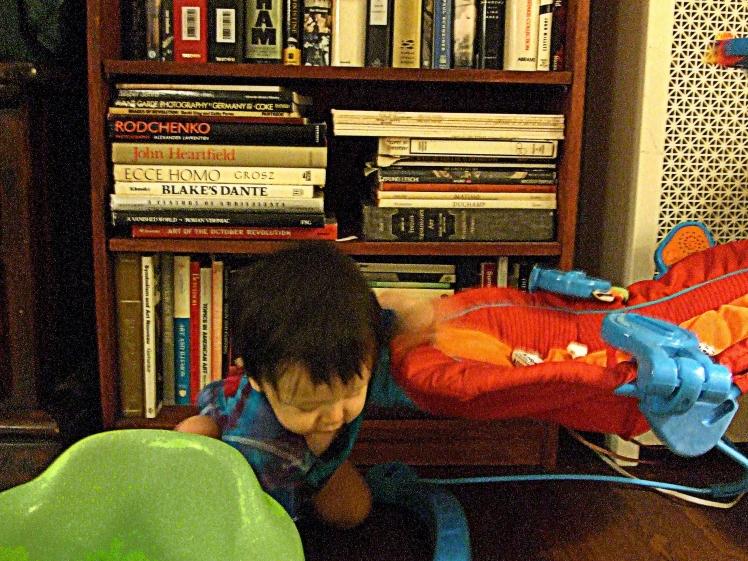 Rui Toys books